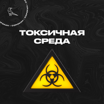 Интернет - токсичная среда
